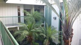 Boynton Seacrest Courtyard